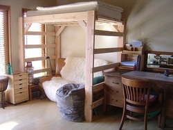 basically loft beds are the type of beds that are elevated from the ground they look much the same as bunk beds only that the space for the other bunk is